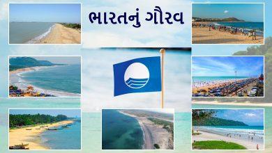 Photo of ભારતનું ગૌરવ- દેશના 8 બીચને મળ્યું ઈન્ટરનેશનલ બ્લૂ ફ્લેગ બહુમાન, ગુજરાતનો શિવરાજપુર અને દીવનો ઘોઘલા બીચનો સમાવેશ